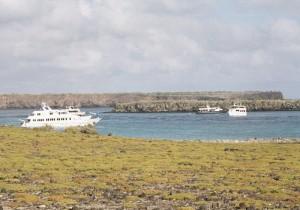 Los islas Galapagos en Ecuador un destino para aprender con Darwin. Foto de javierdoren.