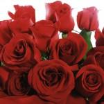 Cruceros románticos en San Valentín 2012